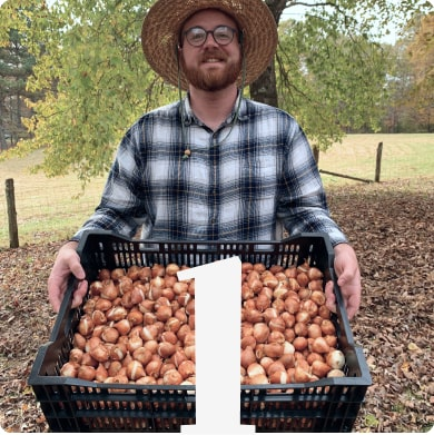 Step 1 Austin holding a crate full of tulip bulbs