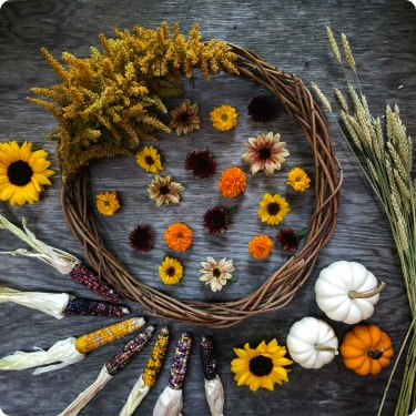 fall seasonal flowers with indian corn and pumpkins